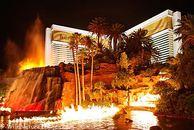 Las Vegas Pauschalreise 516382