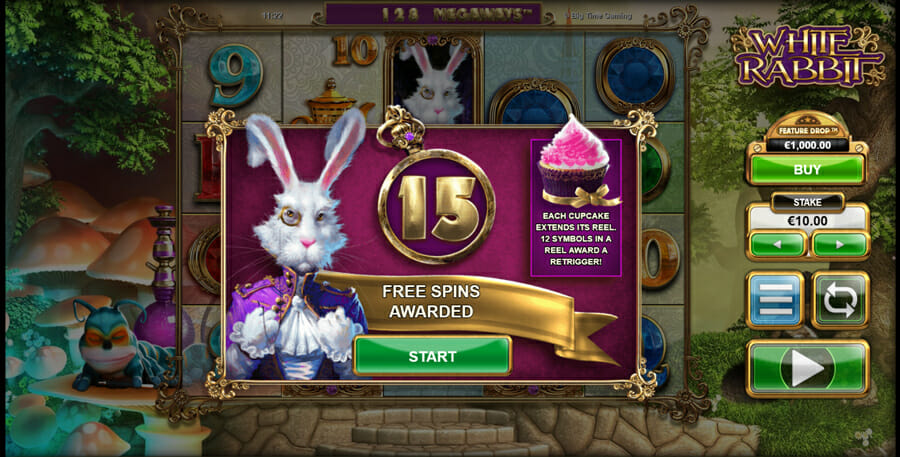 White Rabbit Bonus 456584