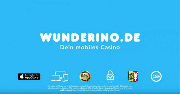 Online Casino 695684